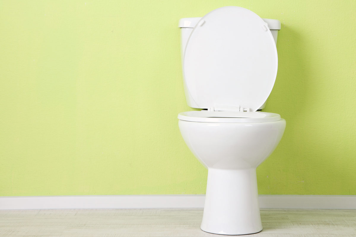toilet and lime green wall behind