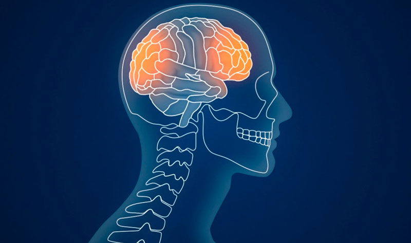 How Concussions Impact Brain Health