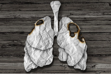 model of damaged lung