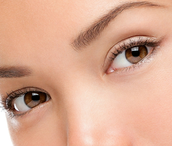 Close up of women's brown eyes